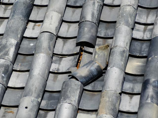 保険を適応できる場合もあり!瓦のひび割れの原因と修理費用の目安
